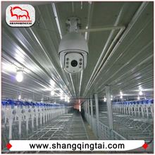 Small MOQ Gestation Crates For Pig In Animal Feeders/Gestation Stall