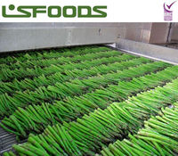Wholesale China FROZEN GREEN ASPARAGUS FOR SALE
