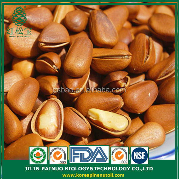 Wholesale New Arrival Organic Siberian Open Pine Nuts for Sale
