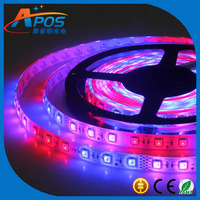 150leds/Reel,FPC Board,IP65 Glue Waterproof,Horse Race,Led SMD5050 Horse Race Flexible Christmas Strip