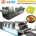 Chinese Instant Noodles Making Machine Fried Instant Noodle Production Line