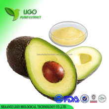 GMP extract avocado oil,Organic avocado sugar extract,free sample extract avocado