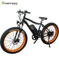 24/36/48V 250/500/1000W snow E BIKE/electric mountain bicycle kit/electric motor road bike
