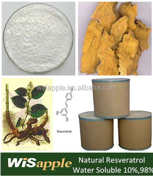 Factory supply pure organic Giant Knotweed Extract resveratrol powder