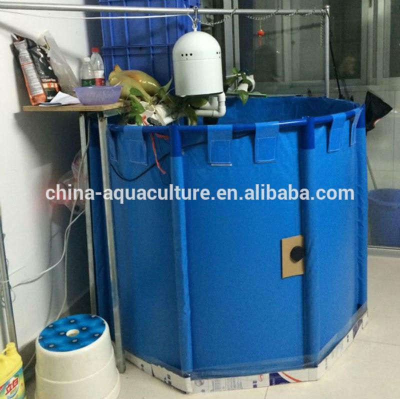 List manufacturers of water fish tank pvc buy water fish for Buy fish tank