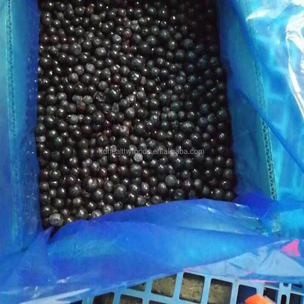 fresh blueberries and frozen fruits supplier for sale