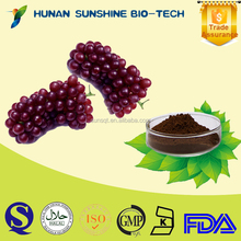 Top Quality Black Grape Seed Extract skin care grape extract