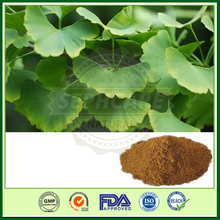 GMP natural dried ginkgo biloba leaf extract in bulk, pure ginkgo biloba extract factory