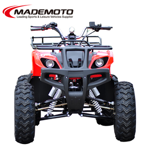 1000W liquid-cooled manual shaft drive ATV with rear differential mechanism