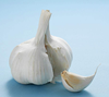 /product-detail/grade-a-class-pure-white-garlic-high-quality-spicy-healthy-natural-garlic-competitive-china-garlic-price-60834797800.html