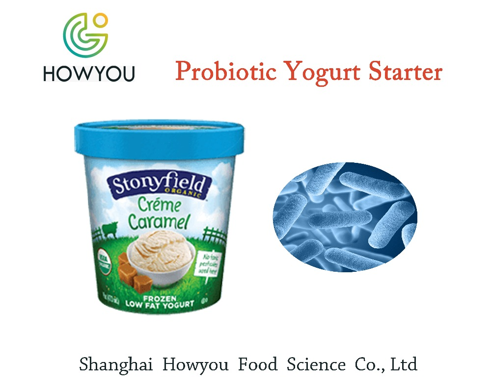 OEM industrial yogurt making machine