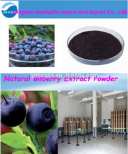 GMP certified factory supply 100% Natural Bilberry fruit Extract powder