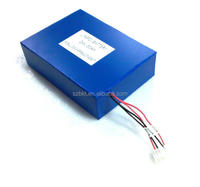 LiFePO4 battery pack 24V 30Ah for power supply