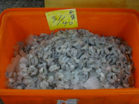 Frozen White Shrimp PND