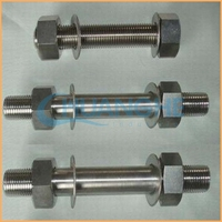 Cheap wholesale fasteners double threaded stud bolt and nut