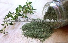 Dried Thyme Leaves - Indian Spices