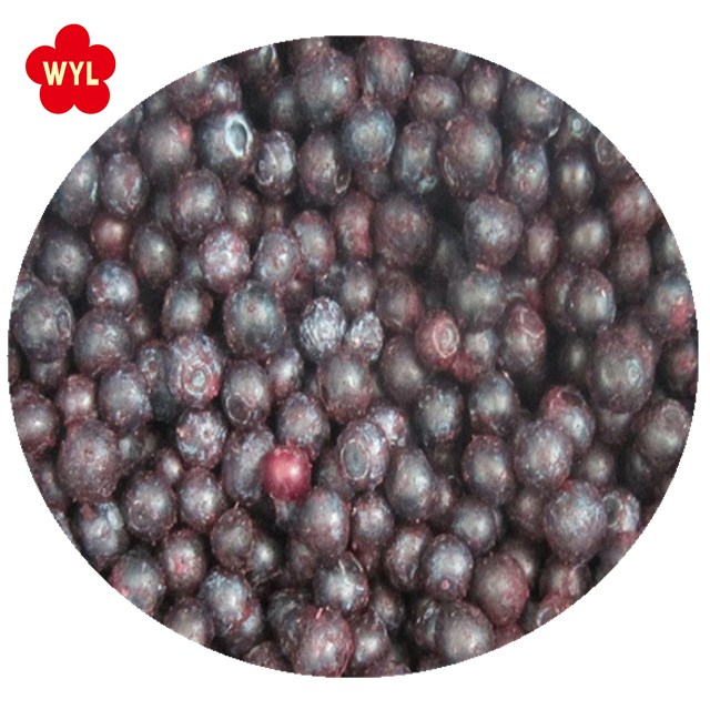 Frozen fruits good price for iqf blueberry