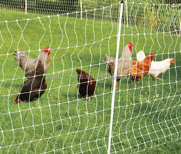 Low Price Chicken Wire Netting/Poultry Fence Plastic Nettings