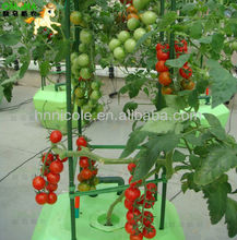 New style without pollution,hydroponic vegetable substrate