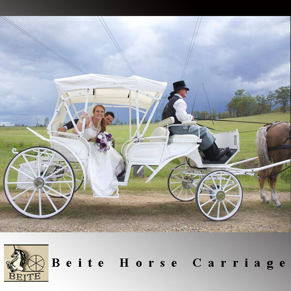 Factory provide Royal Wedding Cinderella Horse Carriage for sale