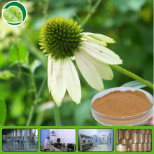 Competitive price chamomile powder extract