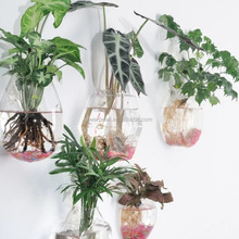 Hanging Wall Planters Hand Blown Glass Art Flower Vase Clear Transparent