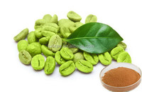 High quality bottom price slimming green coffee bean extract