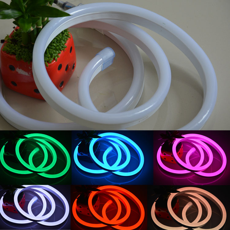 Holiday Decorative Neon Sign Lighting Flex LED Neon Rope light