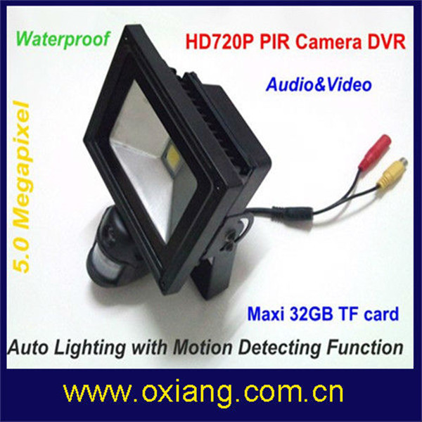 IP56 Water-proof White Light LED Auto Detector Sensor Hidden Camera (Floodlight) / Hidden / Covert Camera