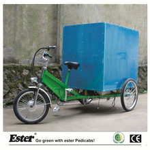 Delivery Cargo Trike