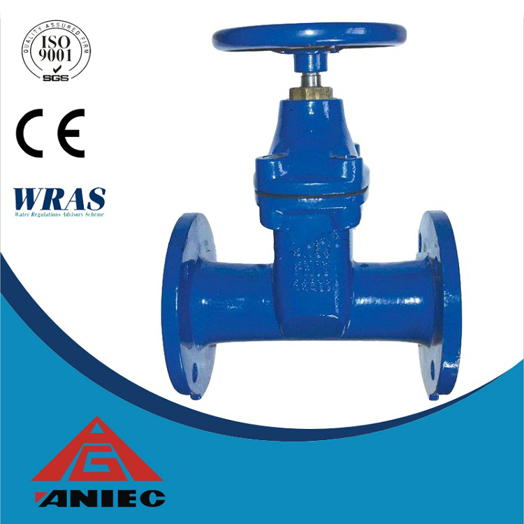 DI Resilient Seated F4 gate valve dn100 PN16