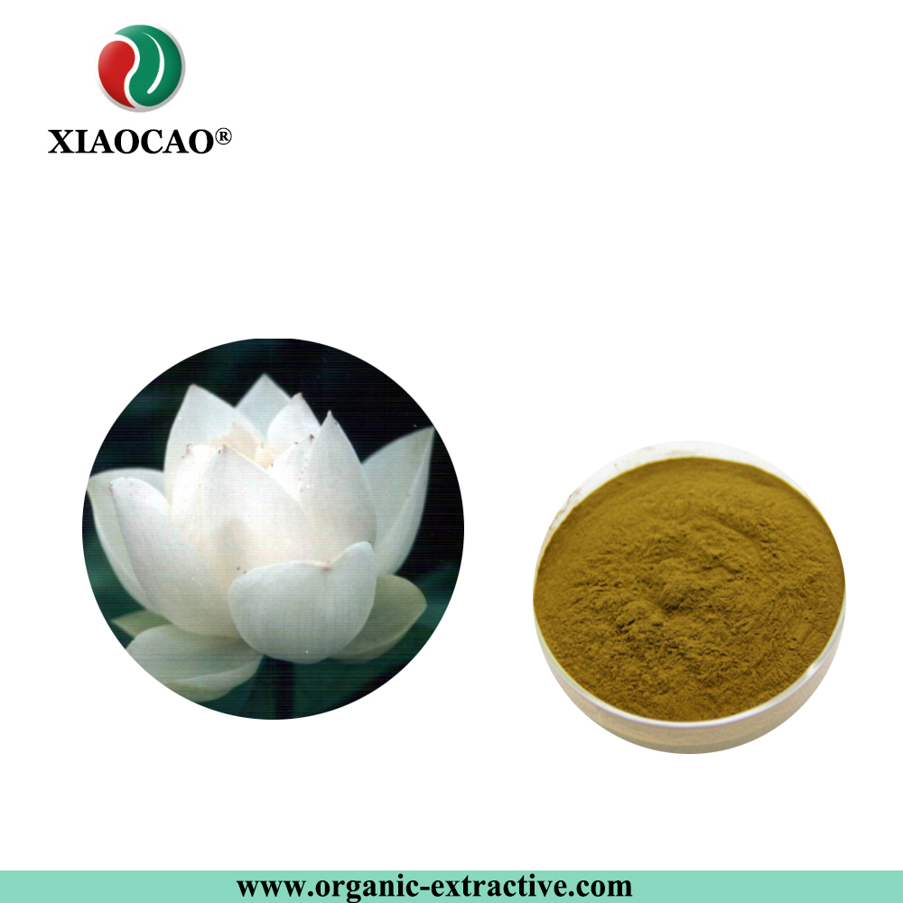 Organic Mountain Snow Lotus Extract Saussurea Involucrata Extract
