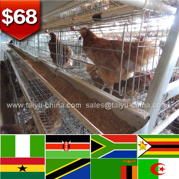 African poultry house design 120 birds design layer chicken cages in kenya farm