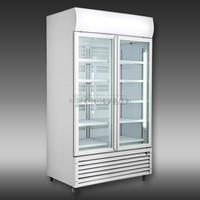 300 - 1400 LITERS DOUBLE GLASS DOORS BEVERAGE DISPLAY COOLER