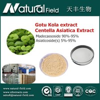 OEM Welcome Centella Asiatica Extract