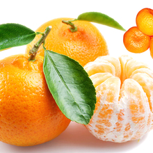 High Quality Sweet Fresh Satsuma Mandarin