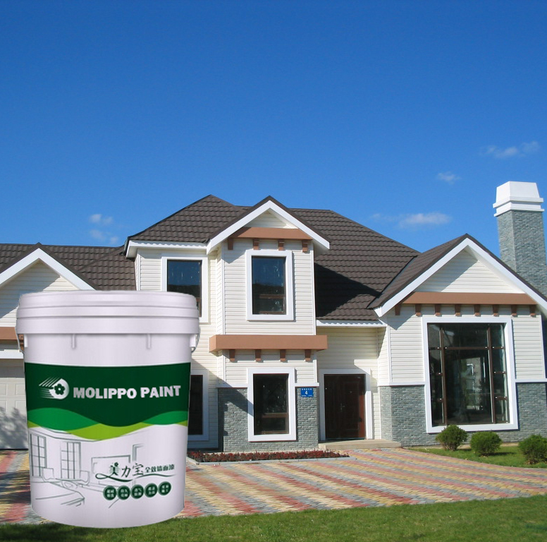 Interior & Exterior Decoration House Paint