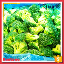Shandong Frozen Broccoli Stem Dice Export