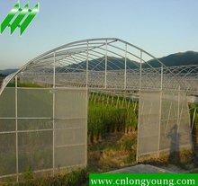 Agricutural Plastic Cover Hothouse