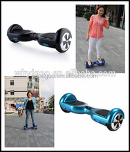 Personal transporter electric unicycle Windgoo 500cc motor scooter