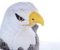 High quality personalized custom lifelike bird eagle plush toys for kids