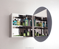 New design wall mounted bathroom mirror Cabinet 7021