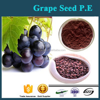 Organic Grape Seed Extract / Natural Grape Seed Extract Powder