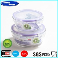 Safe pyrex Glass food container + tableware