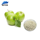 Natural fruit extract bulk apple stem cell extract