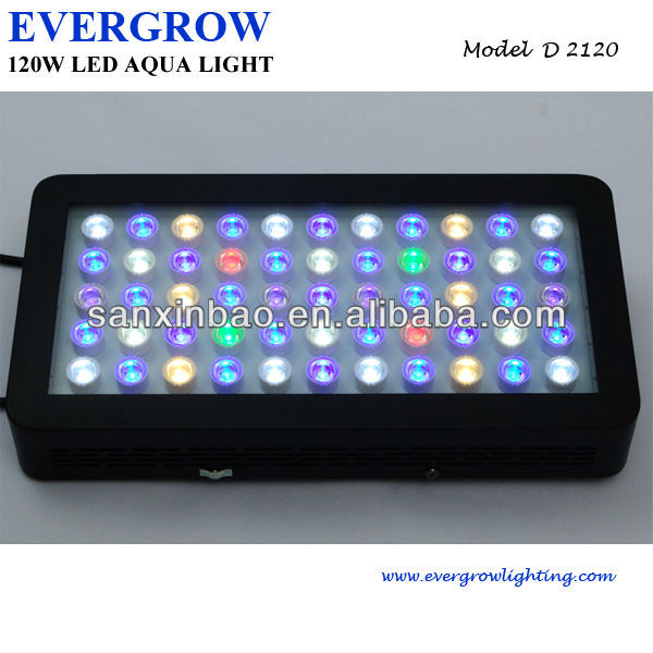 evergrow D2120 120w dimming led aquarium lights