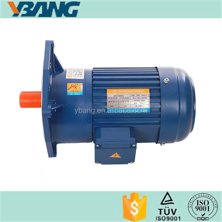 Induction AC Gear Motor with Gear Reducer