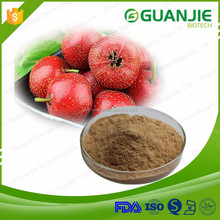 2016 Hot Sale Plant Extract Flavonoids Hawthorn Leaves extract