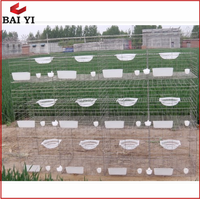 Galvanized Layer Poultry Farm Pigeon Cage Racing