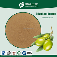 Natural Oleuropein olive fruit extract powder